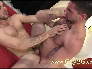 gay love doggystyle mating